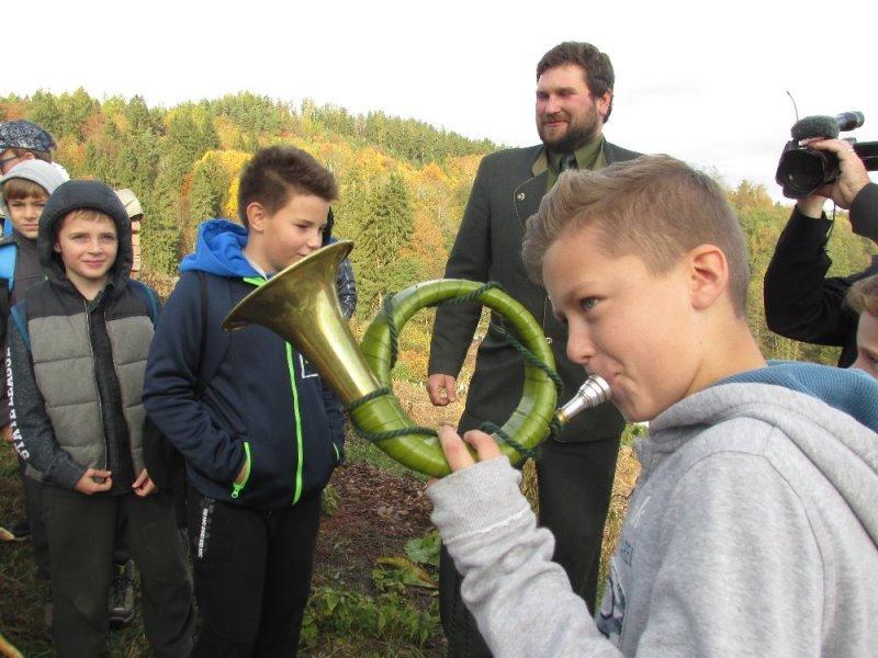 Od semínka ke stromu - projektový den